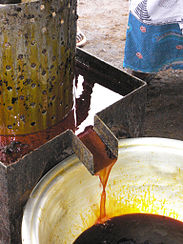 Palm oil production in Jukwa Village, Ghana-07.jpg