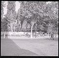 Paolo Monti - Serie fotografica (Isküdar, 1962) - BEIC 6336708.jpg