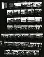 Paolo Monti - Servizio fotografico (Orta San Giulio, 1980) - BEIC 6360226.jpg