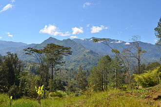 New Guinea Highlands - Landscape in the New Guinea Highlands