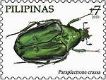 Paraplectrone crassa 2010 stamp of the Philippines.jpg