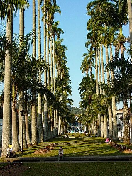 Ficheiro:Park Scene - Joinville - Brazil.jpg