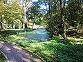 Park dworski (obecnie park miejski im. Rodu Łaskich) - starorzecze (14 20120930241).jpg