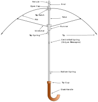 Parts of an Umbrella.svg