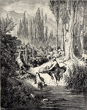 Donkeyskin - Illustration by Gustave Doré