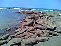 Pedras a beira da Prainha em Setiba - panoramio.jpg