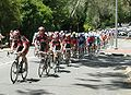 Peloton 1 second lap, Stirling, TDU 2010 Stage 3.JPG