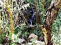 Pequeña cascada - panoramio.jpg