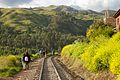 Peru - Cusco Trekking 054 - following the train tracks back to town (6948723954).jpg