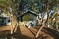 Phoenix, AZ, Sunflower Bloom Mural, Teaching Garden, 2012 - panoramio.jpg