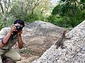 Photographer taking photo of Psammophilus spp from Anaimalai hills IMG 20180421 165728873 HDR.jpg