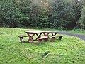 Picnic area, Dalbeattie Town Woods - geograph.org.uk - 1531545.jpg