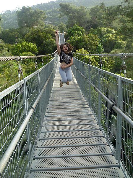 גשר תלוי