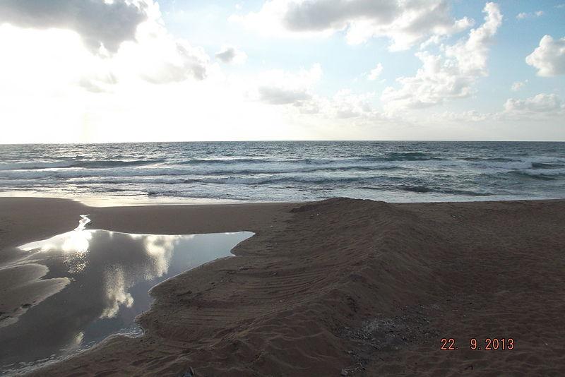 חוף דור