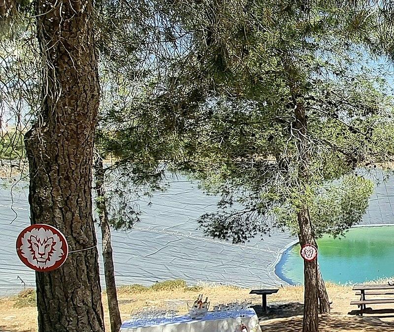 מאגר מים ביער יתיר