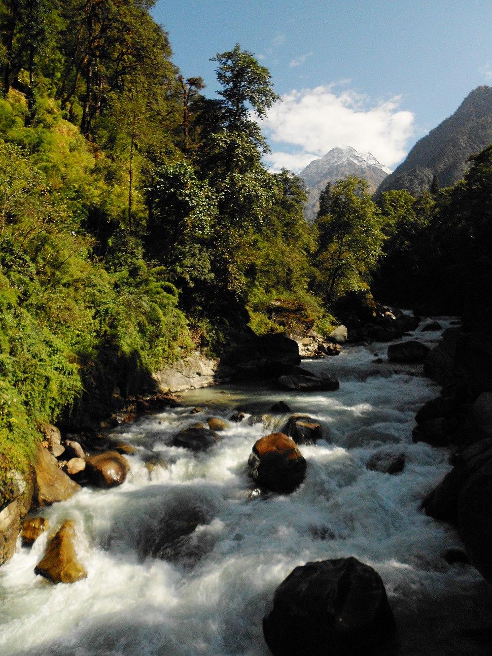 Pindari river from Dwali, Uttarakhand, India