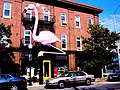 Pink Flamingos and Cafe Hon.jpg