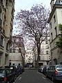 Place Furstemberg.JPG