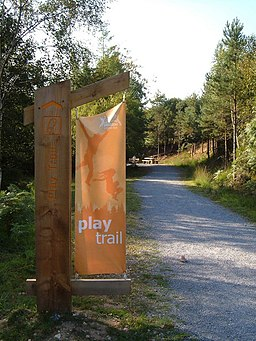 Play trail, Haldon Forest Park - geograph.org.uk - 238849