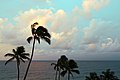 Poipu Coast, Koloa (502713) (16534862867).jpg