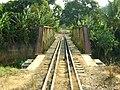 Ponte ferro de Atilio Vivacqua - panoramio.jpg