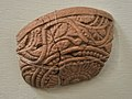 Pottery Fragment - Terracotta - Sonkh - Showcase 6-15 - Prehistory and Terracotta Gallery - Government Museum - Mathura 2013-02-24 6454.JPG