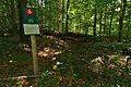 Prírodná rezervácia Jedlinka, CHKO Vihorlat (06).jpg
