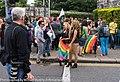 Pride Festival 2013 On The Streets Of Dublin (LGBTQ) (9183780682).jpg