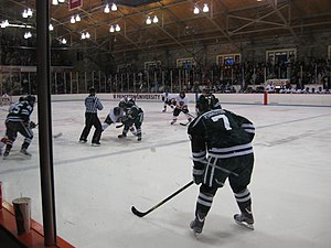 Hobey Baker Memorial Rink - Image: Princeton Dartmouth 2013