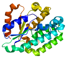Protein DCK PDB 1p5z.png