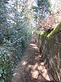 Public footpath, Tower Road North, Heswall (2).JPG