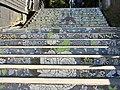Puerto Varas -escalera del pasajae Ricke RF02.jpg