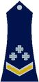 Pukovnik Republika Srpska 1992.png