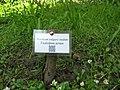 QR Label Archaeobotanical Garden.jpg