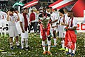 Qatar v Japan AFC Asian Cup 20190201 35.jpg