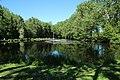 Réserve naturelle régionale des étangs de Bonnelles le 26 mai 2017 - 04.jpg