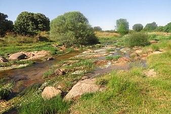 Río Corneja 2.jpg