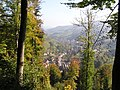 RUE CLEMENCEAU - panoramio.jpg