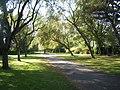 Radipole Park Gardens 3 - geograph.org.uk - 1474956.jpg
