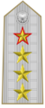 Rank insignia of generale di corpo d'armata con incarichi speciali of the Italian Army (1945-1972).png