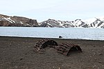 Remains at Whalers bay after the eruption & mudslide (24145809403).jpg
