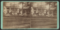 Residence of R. A. Mitchell Esq., Cazenovia, N.Y, by A. A. Johnson.png