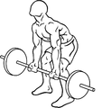 Reverse-grip-bent-over-rows-1.png