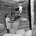Rijstpelmolen van een Hindoestaanse rijstboer in Nickerie, Bestanddeelnr 252-5602.jpg