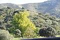 Rio Douro em Portugal DSC01318 (15531379388).jpg