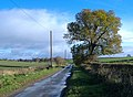Riplingham Road near Skidby - geograph.org.uk - 609442.jpg