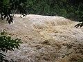 Riu desbordat.JPG