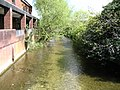 River Allen - geograph.org.uk - 301428.jpg
