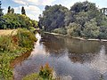 River Mole from Common Meadow, Leatherhead.jpg