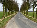 Road to Ottringham - geograph.org.uk - 131400.jpg